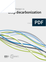 DEcarbonization DDPP Interim 2014 Report
