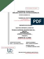 Guia Reporte Estadia Institucional 31 Julio 2013 TITO