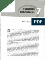 Capítulo 07 Funções Executivas