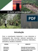 O Meio Ambiente Global