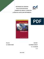 Comunicacion Castellanoinstrumental 121205171208 Phpapp02