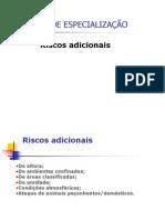 RISCOS ADICIONAIS