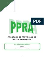 Modelo de Ppra (2)