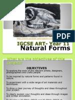 igcse art- year 11 weebly week 1 natural forms