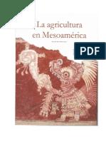E.M.M. La Agricultura en Mesoamérica