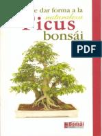 Bonsai El Ficus Bonsai