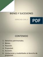 Bienes y Sucesiones II-1