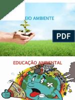 Meio Ambiente %281%29