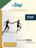 In-Step Für Projektleiter