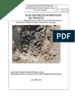Informe Nº 01.01 Calle Boca Del Sapo