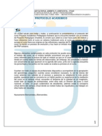 Protocolo - Modulo Academico 2013-II