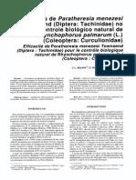 1993, Eficiencia de Paratheresia Menezesi Townsend No Controle Biologico - Oleagineux - Moura Et Al