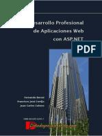 Desarrollo Profesional de Aplicaciones Web Con ASP .NET