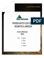 02 Prueba Batch Con Celda Neumatica Jameson - Marcelo Aguilar
