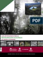 Guía Metodológica Restauración Ecológica