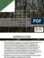 PPT_EntenderleySPDA.pdf