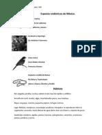 Especies Endémicas de México