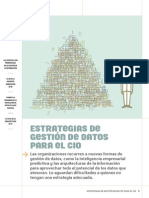 SCIO Data Management Strategies SPANISH Final Revisado