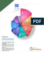 Infográfico Auditoria Interna.ppt