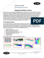 Scm Mapping Workflow Petrel 2010