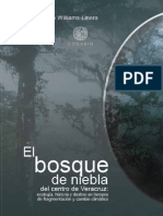 BOOK-bosque de Niebla