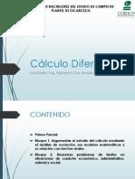 Bloque 1 Cálculo Diferencial