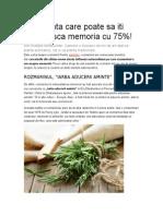 Planta Care Poate Sa Iti Creasca Memoria Cu 75