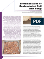 Bioremediation of Contaminated Soil With Fungi