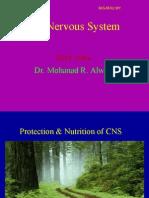 2 CNS Protection