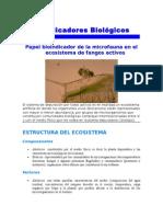 INDICADORES  BIOLOGICOS