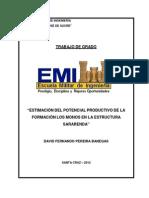 Potencial en los Monos.pdf
