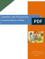 Gestion de Proyectos_feb2011
