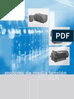 Motores MT