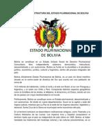 ORGANIZACIÓN Y ESTRUCTURA DEL ESTADO PLURINACIONAL DE BOLIVIA.docx