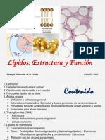 4. Lípidos_ Estructura_Función.ppt