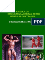 Kinesiologi Upper Limb &Lower Limb