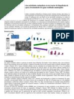 Paper Biopeliculas