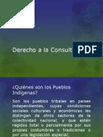 Clase 11 Consulta y Pueblos Indigenas 1