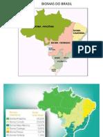 10Aula_Biomas Do Brasil