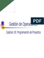 18_-_ProgramacisndeProyectos