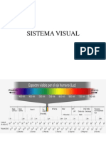 Sistema Visual2