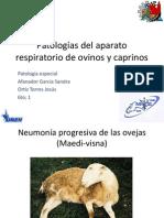 2patologasdelaparatorespiratoriodeovinosycaprinos-140224195409-phpapp02