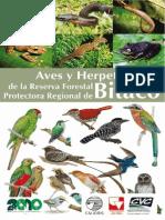 Aves y herpétos de la Reserva Forestal de Bitaco