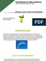 Nanocatalizadores Para Biocombustibles