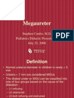 Mega Ureter