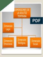1 Clase 1 Ppt Dimensiones Adultez