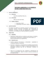 233053291 Plan de Auditoria Ambiental a Una Empresa