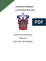 Moluscos Reporte