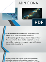 ADN Ó DNA