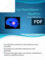 fisiología hipofisiaria